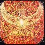 Alex Grey Fenix