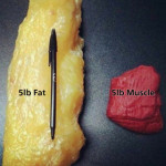 5 pounds of fat 5 pounds of muscle